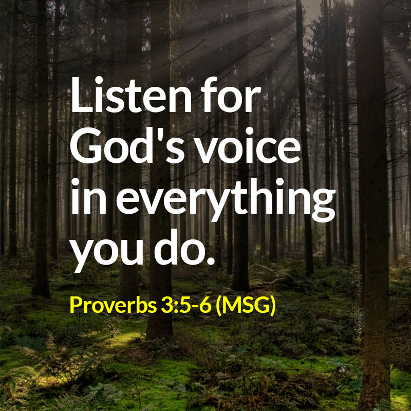 Proverbs 3:5-6 (MSG)- Quote